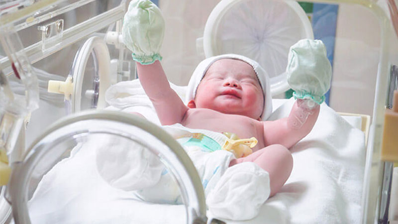 proses-bayi-tabung